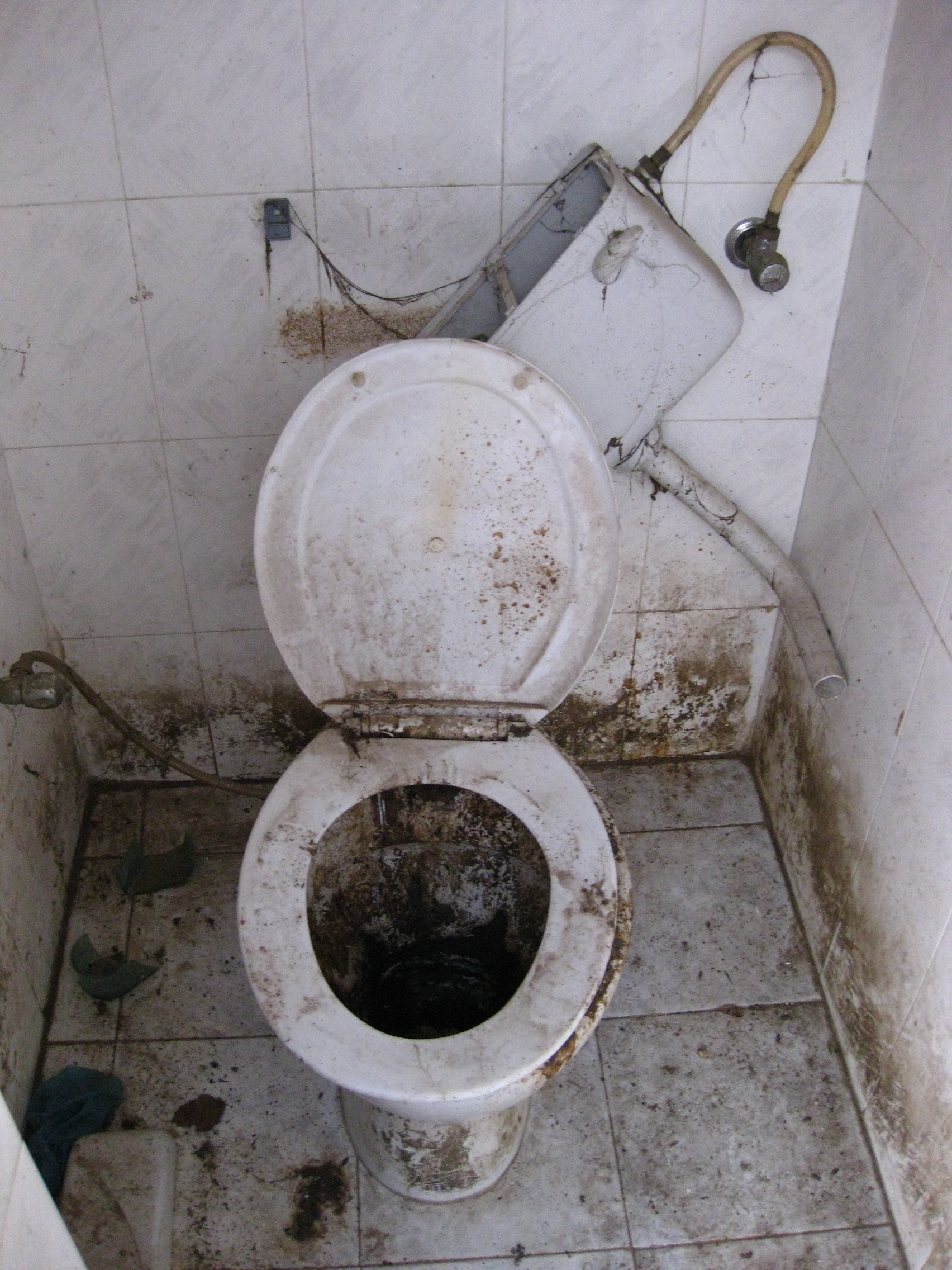 5 Toilets You Don't Want To Find in Asia | THESE ROADS